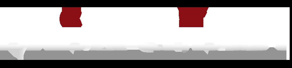 株式会社プラセルボロゴ